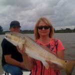 kerrie redfish