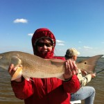 Fox Redfish2